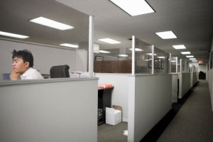 Office cubicles in USA